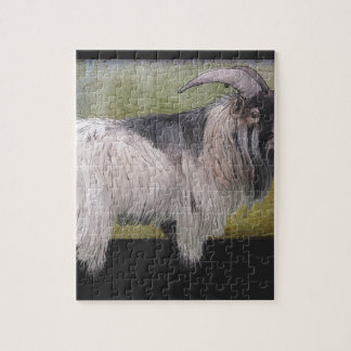 Handsome pygmy goat jigsaw puzzle