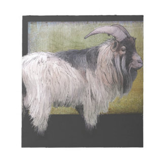 Handsome pygmy goat notepad