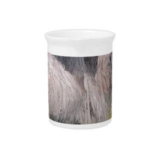 Handsome pygmy goat pitcher