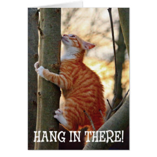 Hang in There with Cat Greeting Card