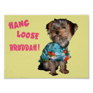 HANG LOOSE BRUDDAH POSTER