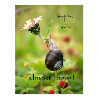 Hang on, you´re almost there! Motivational Snail Postcard