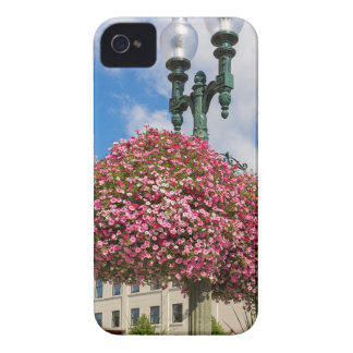 Hanging and Potted Plants in Lynden Washington iPhone 4 Cases