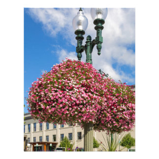 Hanging and Potted Plants in Lynden Washington Letterhead