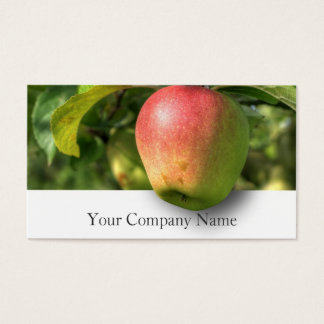 Hanging Apple Orchard Photograph - Business Card