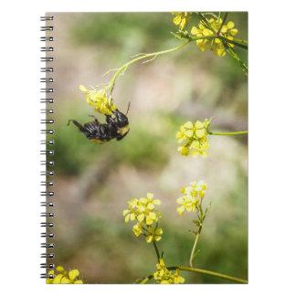 Hanging Around Notebook