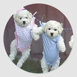 Hanging Around Puppies Round Stickers