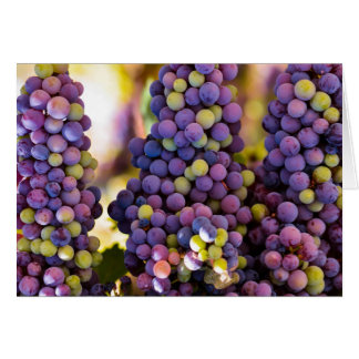 Hanging Grape Bunches Card