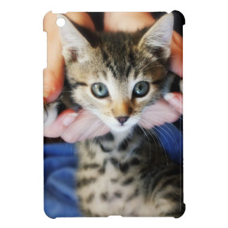 Hanging Out Tabby iPad Mini Case