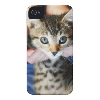 Hanging Out Tabby iPhone 4 Cases