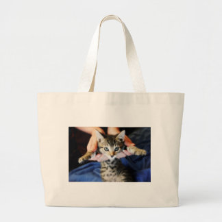 Hanging Out Tabby Large Tote Bag