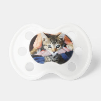 Hanging Out Tabby Pacifier