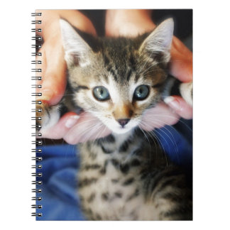 Hanging Out Tabby Spiral Note Book