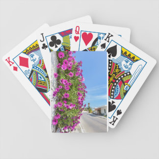 Hanging pink spanish daisies on wall near street bicycle playing cards
