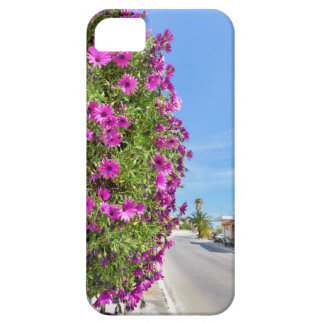 Hanging pink spanish daisies on wall near street iPhone 5 covers