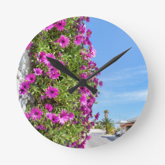 Hanging pink spanish daisies on wall near street round clock