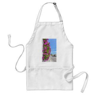 Hanging pink spanish daisies on wall near street standard apron