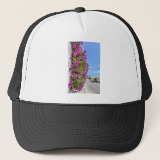 Hanging pink spanish daisies on wall near street trucker hat