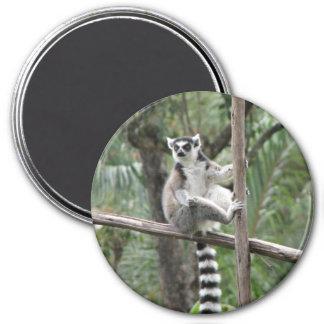 hanginout 3 inch round magnet