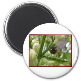 Hangover.JPG Funny beetle Lustiger Käfer 2 Inch Round Magnet