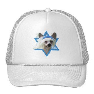 Hanukkah Star of David - Chinese Crested Trucker Hat
