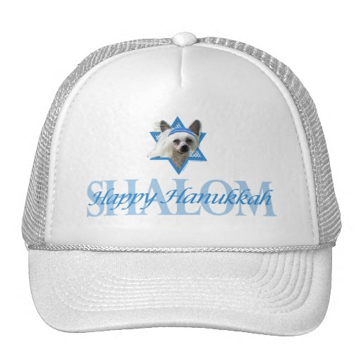 Hanukkah Star of David - Chinese Crested Mesh Hats