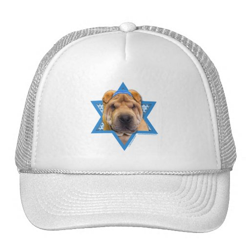 Hanukkah Star of David - Chinese Shar Pei Hat