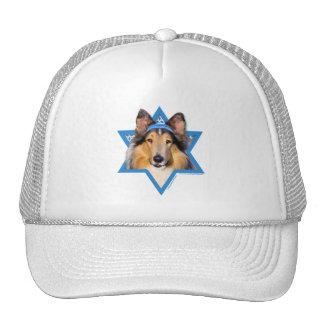 Hanukkah Star of David - Collie Mesh Hats