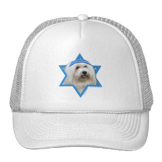 Hanukkah Star of David - Coton de Tulear Mesh Hats