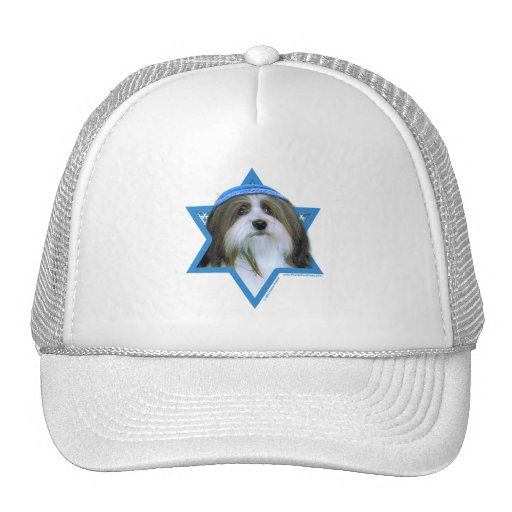 Hanukkah Star of David - Havanese Mesh Hats