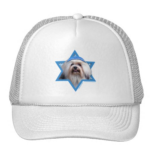 Hanukkah Star of David - Lowchen Hat