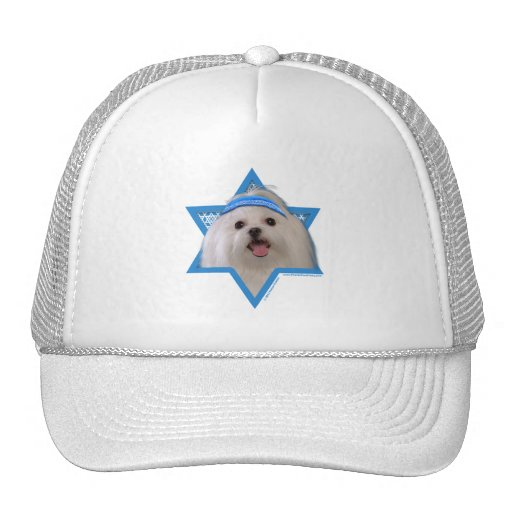 Hanukkah Star of David - Maltese Hat