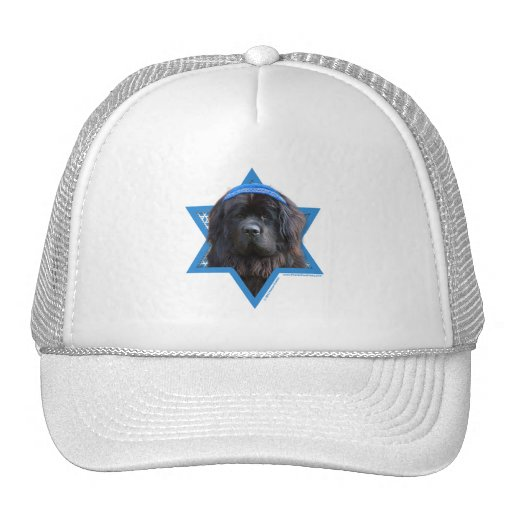 Hanukkah Star of David - Newfoundland Hat