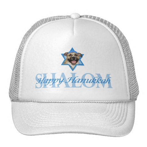 Hanukkah Star of David - Pitbull - Tigger Mesh Hats