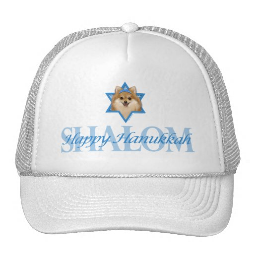 Hanukkah Star of David - Pomeranian Mesh Hats