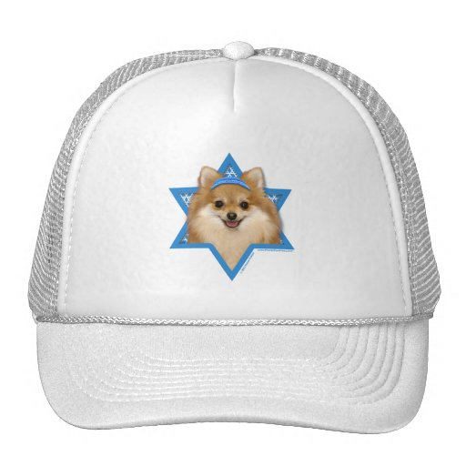 Hanukkah Star of David - Pomeranian Trucker Hats