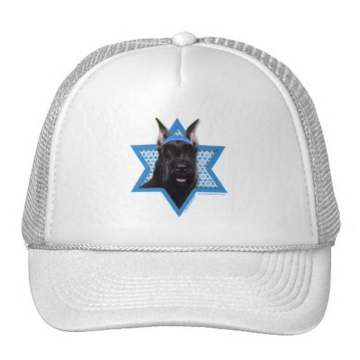 Hanukkah Star of David - Schnauzer Mesh Hats