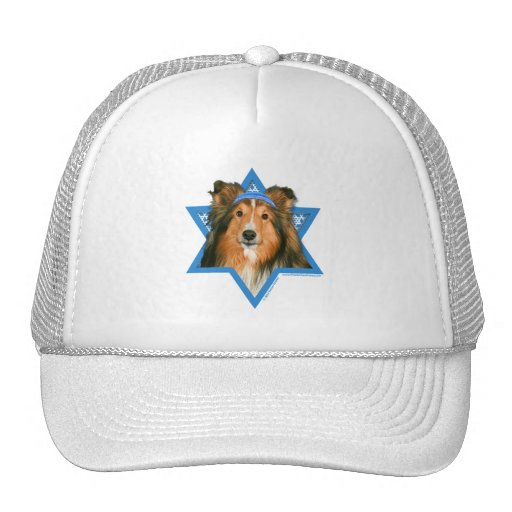 Hanukkah Star of David - Sheltie Mesh Hat