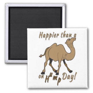 Happier than a Camel on Hump Day Magnet