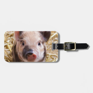 Happines Pig Love Luggage Tag
