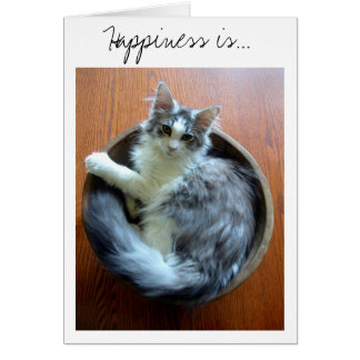 Happiness is a bowl full of kitten card