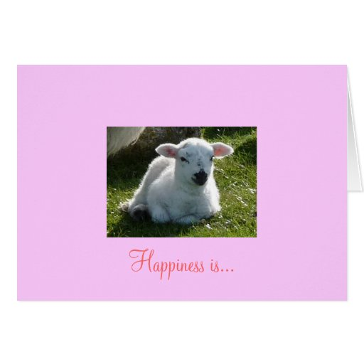 Happiness Is a Cuddly Warm Little Lamb Greeting Card