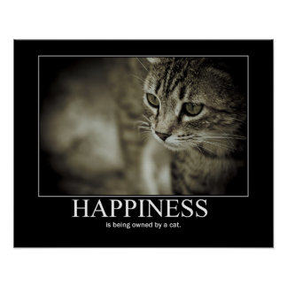Happiness is Being Owned by a Cat Poster