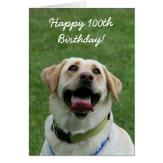 Happy 100th birthday labrador greeting card