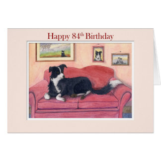 Happy 84th Birthday, border collie dog on the sofa Card