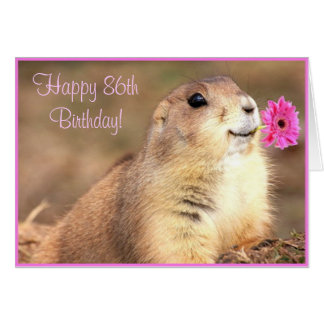 Happy 86th Birthday Prairie dog greeting card