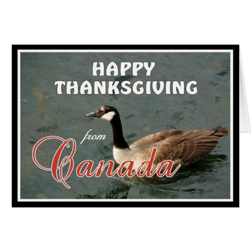 Happy American Thanksgiving from Canada Greeting Card