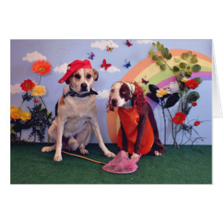 Happy Anniversary, photo of 2 dogs & butterflies Card