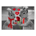 Happy Anniversary Squirrels in Love  Card