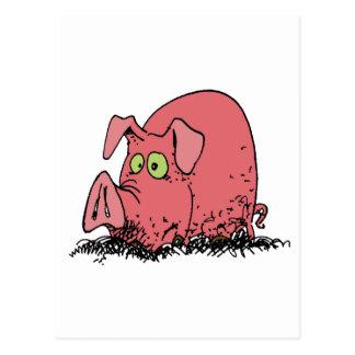 Happy as a pig in mud postcard